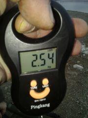 21.02.16 вес