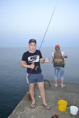 Alushta Rockfish