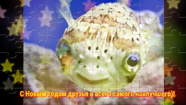 imgonline-com-ua-Bokeh-Ct2cS7bWyGby.jpg
